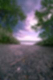Nature-9797.jpg