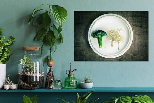 Fine Art _Food Photography_ BroccoliTree