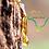 Thumbnail: Aceite Esencial de Bálsamo de Copaiba