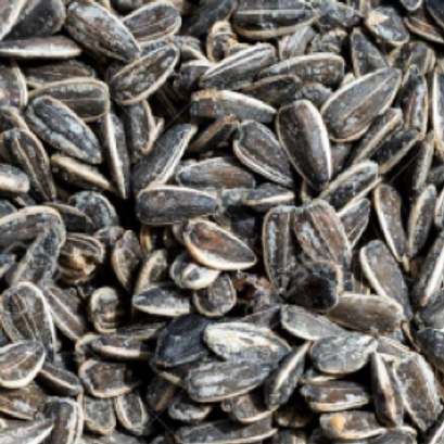 Roasted Salted Sunflower Seeds (Per Pound)