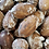 Thumbnail: Whole Pecan Roasted Salted in Shell (Per Pound)
