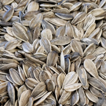 Roasted Lightly Salted Sunflower Seeds (Per Pound)