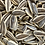Thumbnail: Roasted Unsalted Sunflower Seeds (Per Pound)