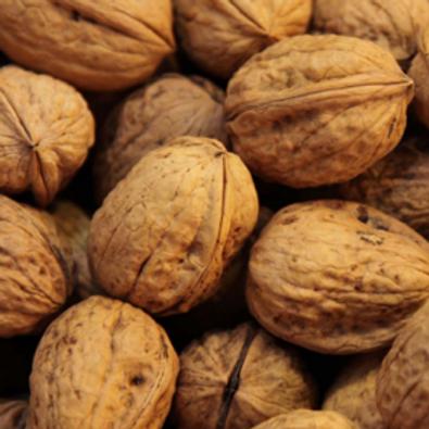Walnuts in Shell (Per Pound)