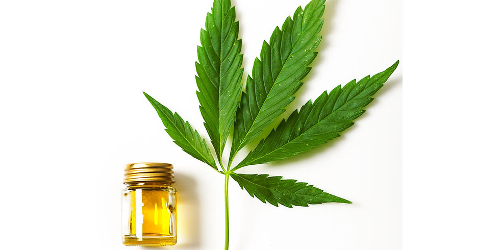 The Ins and Outs of CBD Oil
