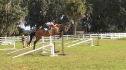 Farandola Jumping