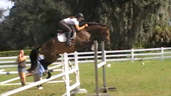 Hatari Jumping under saddle3