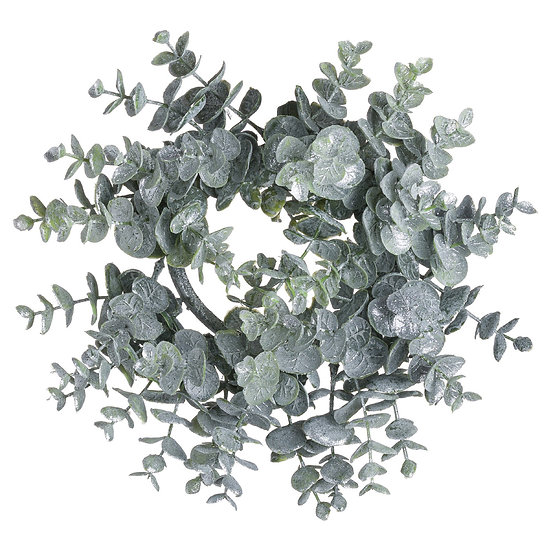 Medium Frosted Eucalyptus Wreath