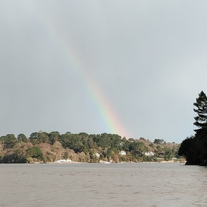 Discover The Delightful Helford Estuary