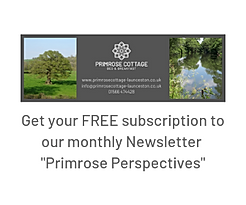 FREE Publication, Primrose Perspectives