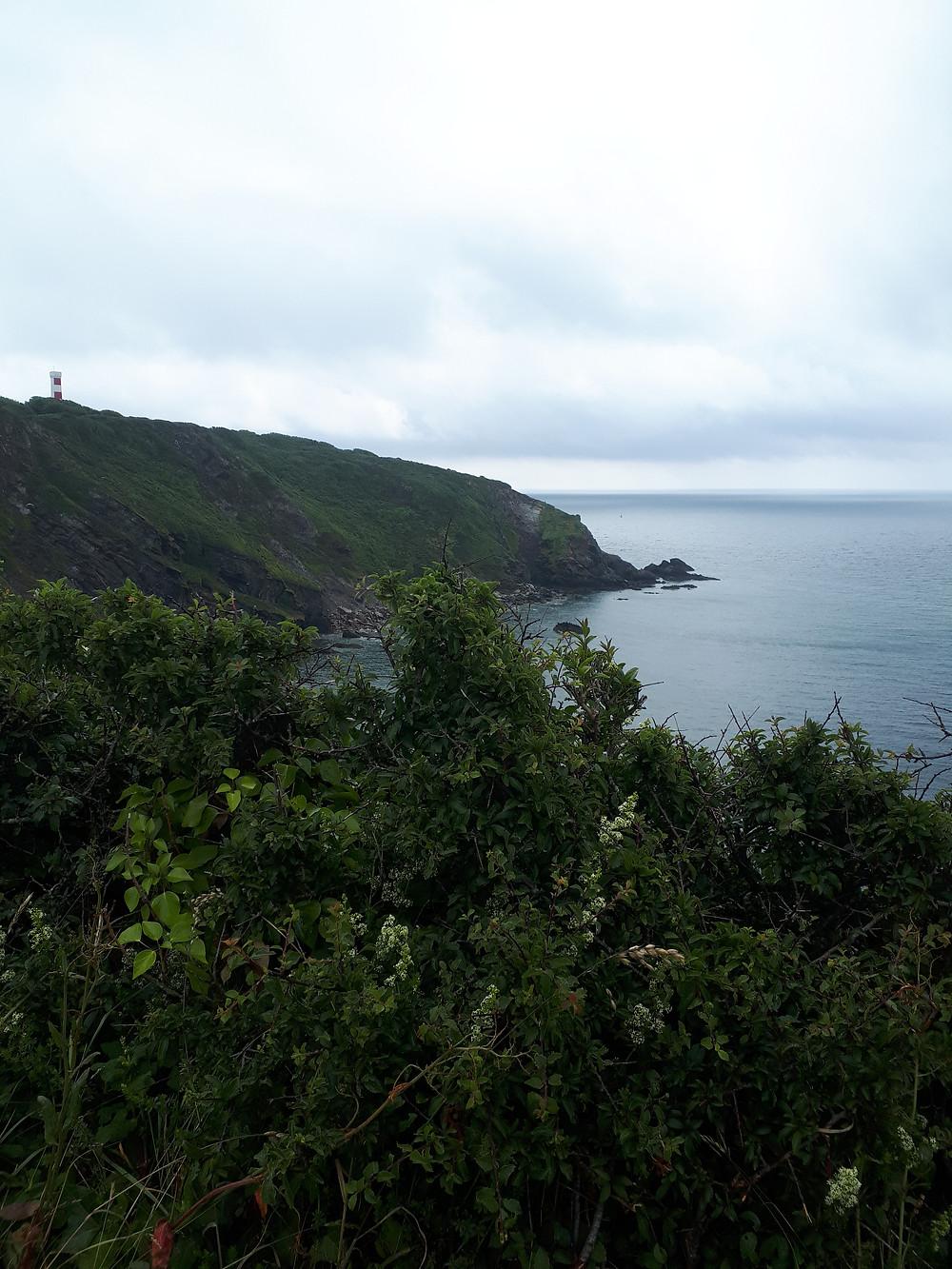 Gribbin Head in Quieter Cornwall