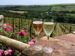 Cornish Gift Ideas - Camel Valley Winery