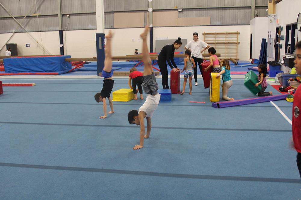 Gymnasts working on balance and strength