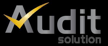 Logo Audit Solution