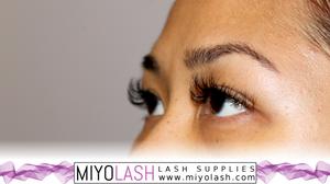 lash photos