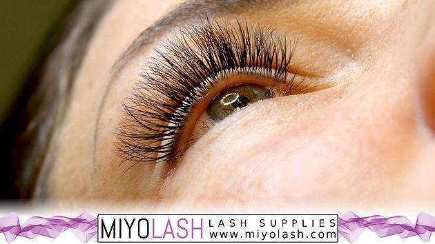 Volume Mink in 5D | Eyelash Extension Supplies | Canada | Miyo Lash