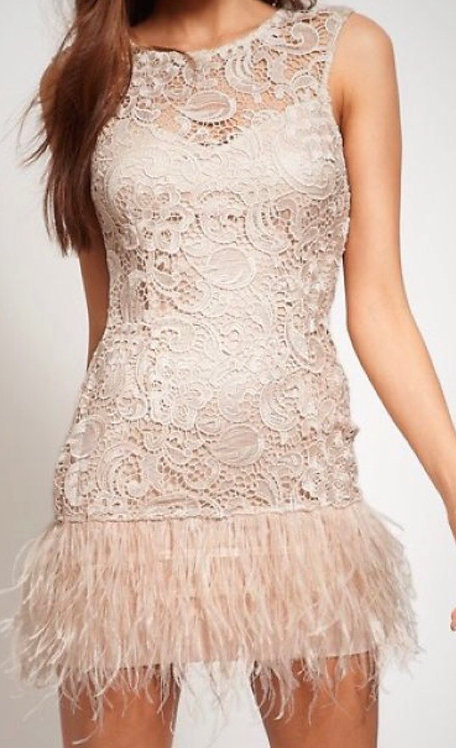Size 16 Lace shift dress with Feather Trim