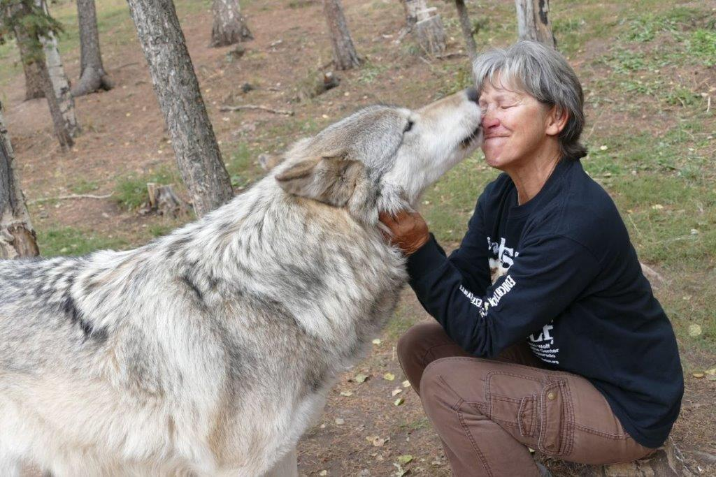 Kissed by a Wolf