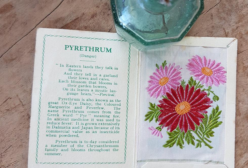 Pyrethrum Silk Flower