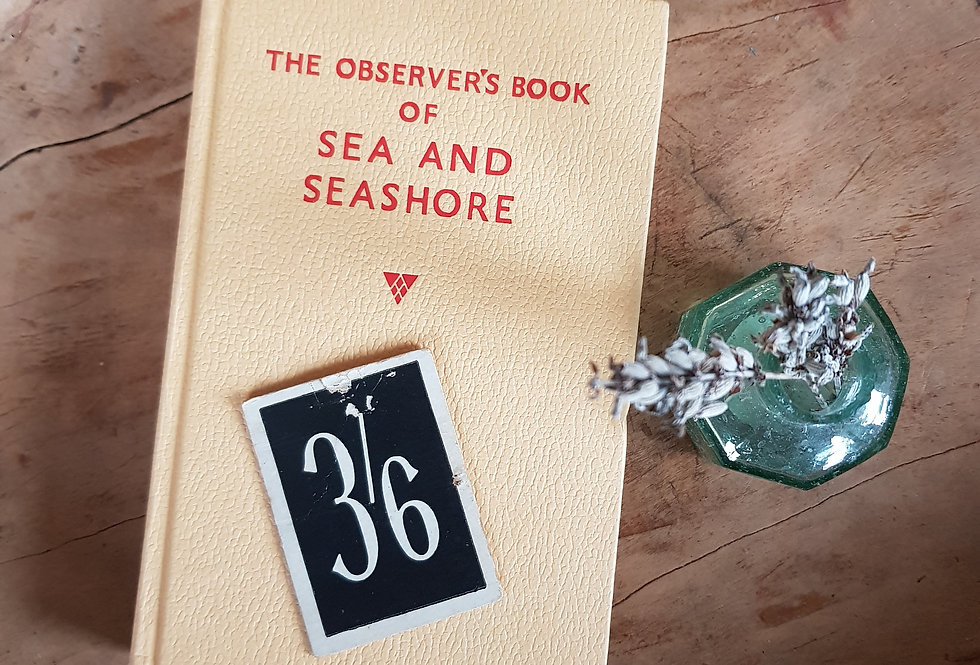 Observer's Book of Sea and Seashore