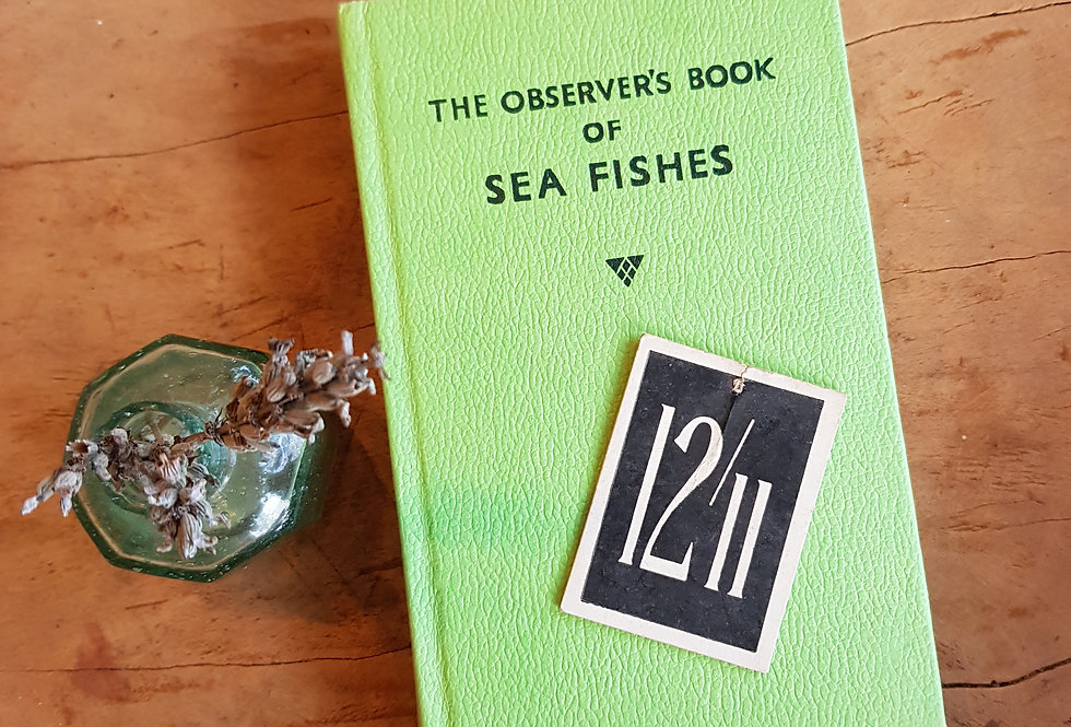 Observer's Book of Sea Fishes