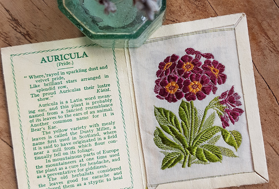 Auricula Silk Flower