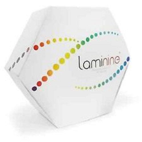 라미나인  천연줄기세포 특수영양제 30캡슐-1