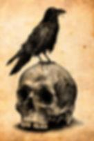 5958141368ce7fb9fdd58a7675bd21ec--crow-t