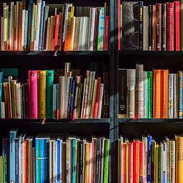 bookcase-books-bookshelves-159711-sm.jpg