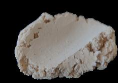 Muschelhalt