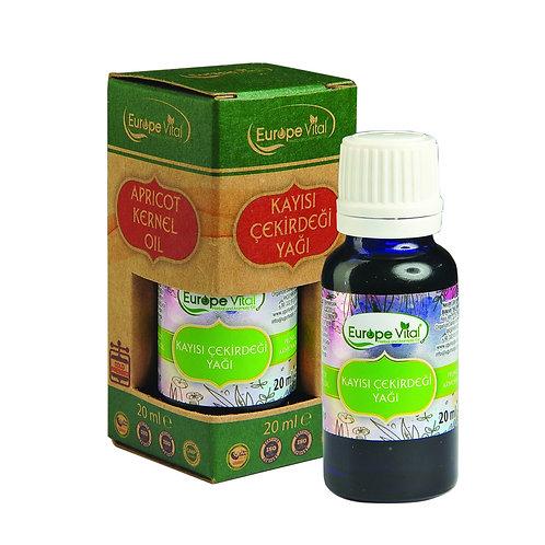 Kayısı Çekirdeği Yağı-Apricot Kernel Oil- زيت نواة المشمش