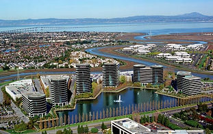 redwood shores.jpg