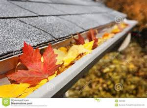Gutter Cleaning Fall and Spring