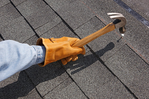 Residential Roof Tune Up Package 2