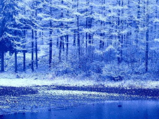季節と暮らしを楽しむ七十二候『魚上氷うおこおりをいずる』
