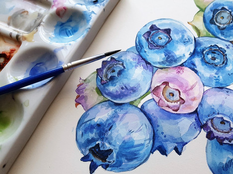 Water colour blueberries