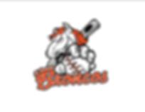 bronco logo2.png