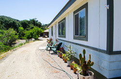 Manufactured home with cacti