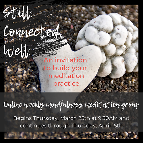 Still, Connected, Well: Building Your Meditation Practice