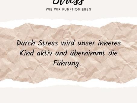 Stress - wie wir funktionieren
