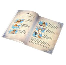 Rulebook - Attributes
