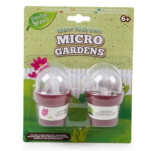 Grow your own micro garden
