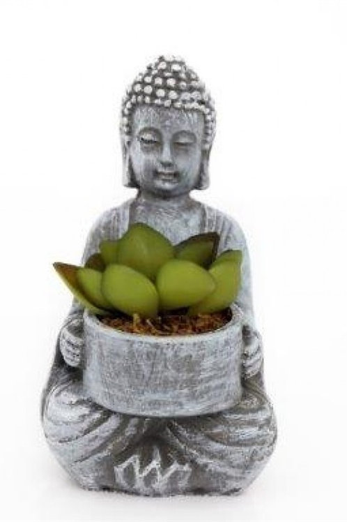 Buddha with succulent