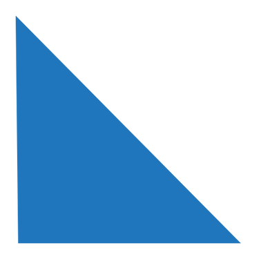 healthy body triangle.png
