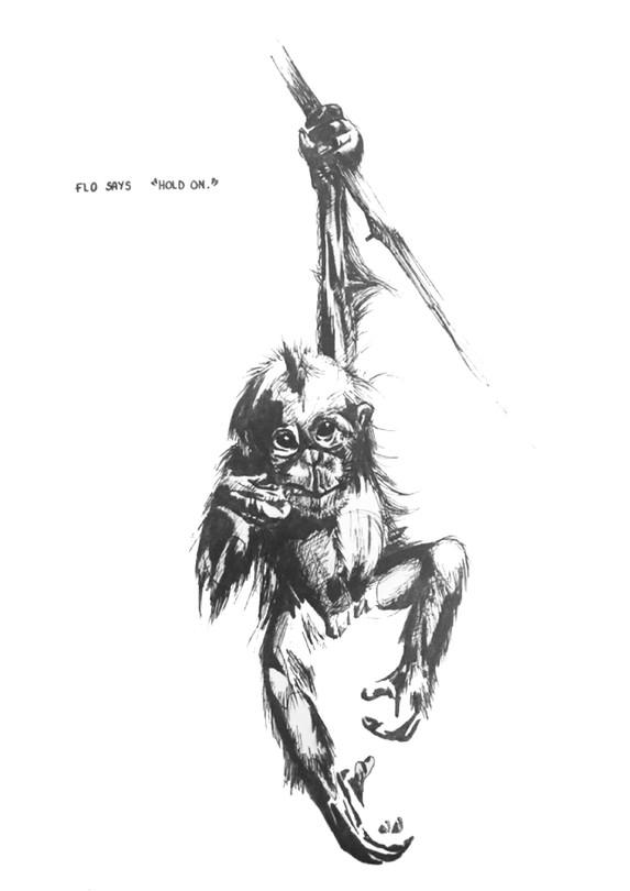 Flo the Orangutan