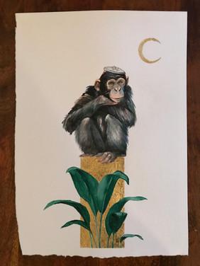 Inner Chimp