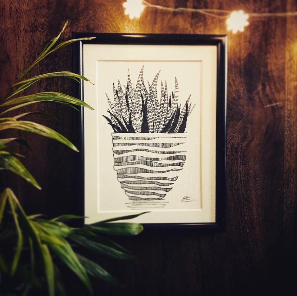 Minimalist Botanicals