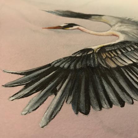 Heron of Hakone
