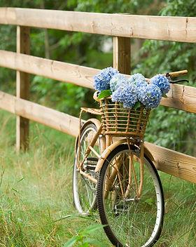 Campo Bike Ride