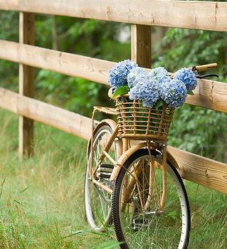 田舎のバイクライド